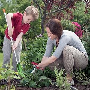 За двора и градината