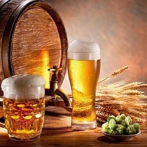 Пивоварство