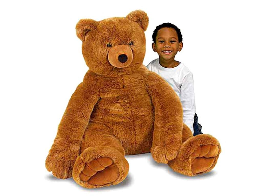 12138 Плюшена мечка